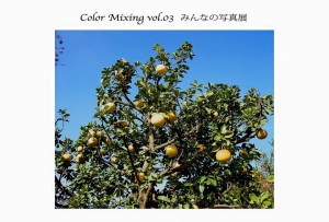 Color Mixing vol.3_1