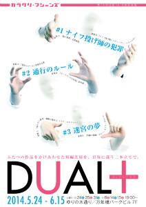 dualplus212×300